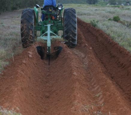 Trench Plough Single Furrow - DVP220