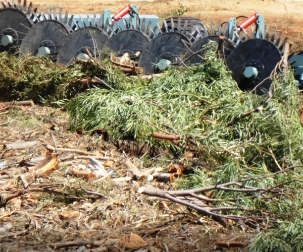 Erdvark Bush Rake TKRT